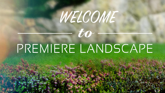 Welcome to Premiere Landscape Services
